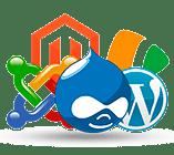 İçerik Yönetim Sistemi - Theoria Web Tasarım